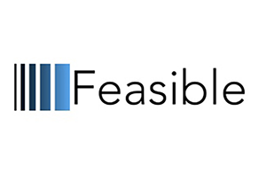 Image of Feasible's Logo